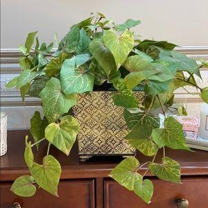 Lush Green Foliage Centerpiece
